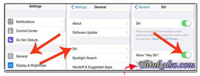 What Can Siri Do